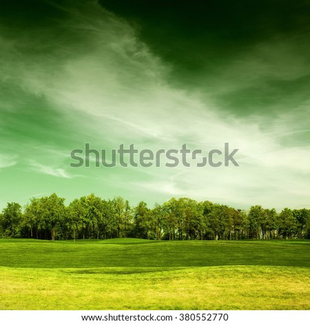 green landscape in summer day, grassy field and trees with sky on background