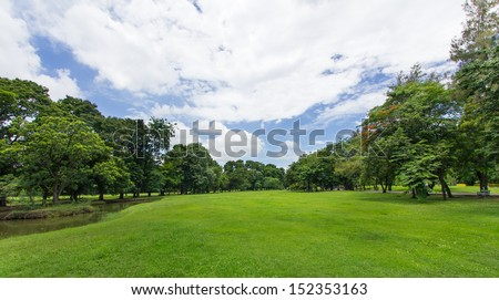 Green Lawn and Trees with blue sky at the public park