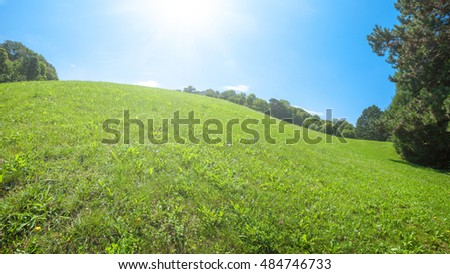 Green lawn with blue sky in park beautiful morning light in public park with green grass field and green fresh tree plant perspective to copy space for multipurpose in the backlight warm sunbeam light