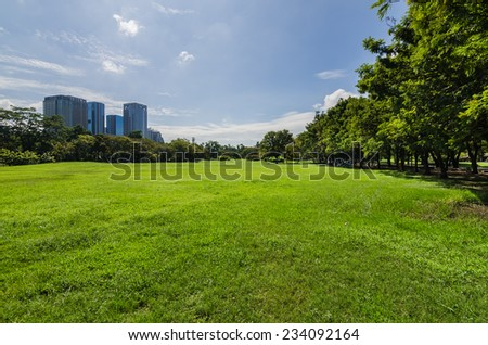 green lawn with tree and buildings in public park - stock photo