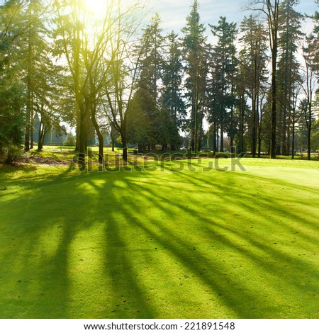 Green lawn with trees in park under sunny beams - stock photo