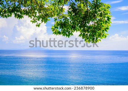 green leaf blue sea space sky background - stock photo