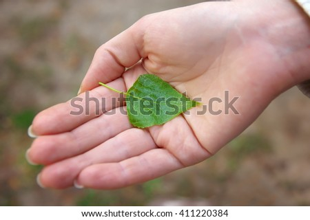 Green leaf in hand - stock photo