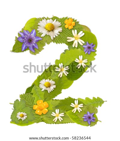 Green leaf  number whit flower in white. Number 2
