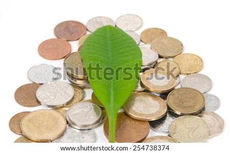 Green leaf on a metal coins isolated on white background - stock photo