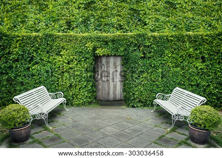 Green leaf wall and door with garden chair - stock photo