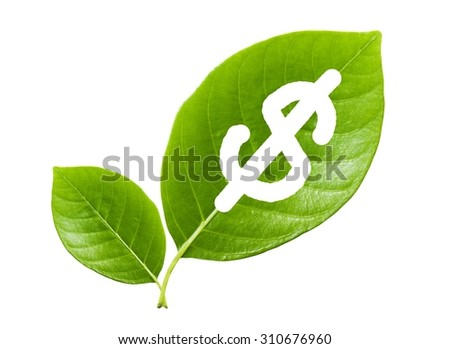 green leaf with a cut out dollars, Concept save the earth, save money - stock photo