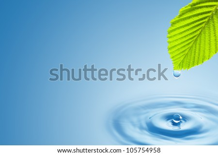 Green leaf with splashing water drops on the blue background. - stock photo