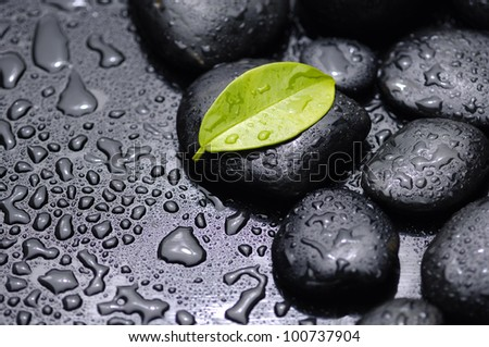 green leaf with stones on wet black background - stock photo