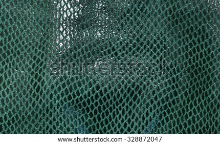 Green Leather. Concept and Idea of Fine Leather Crafting.  Dark green leather laser treatments.