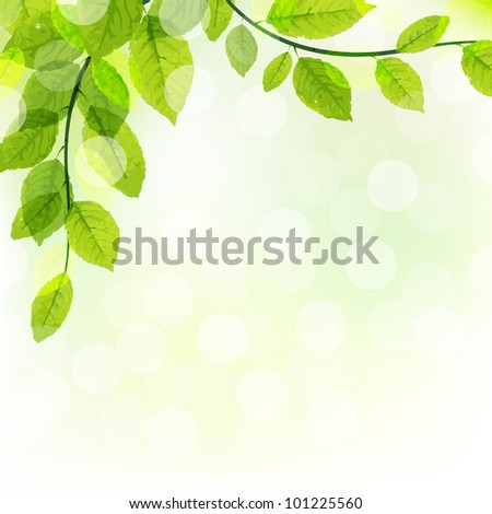 Green Leaves Background With Bokeh - stock photo