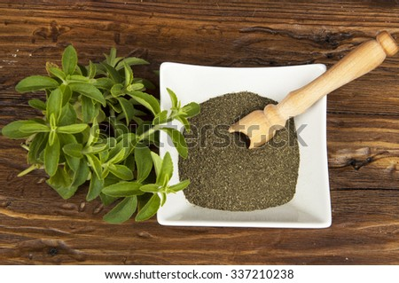 green leaves, dried leaves and powder of stevia - stock photo