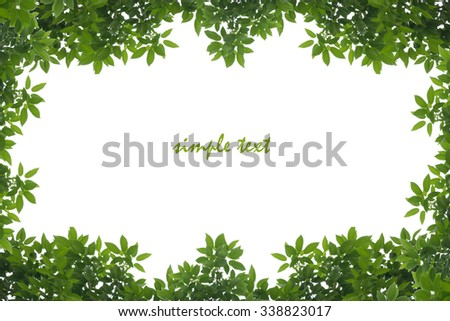 Green leaves frame and isolated with text.