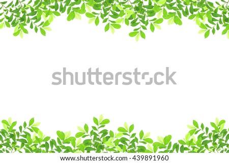 green leaves frame on white background - stock photo