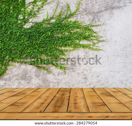 Green leaves ivy wall and wood floor for background  - stock photo