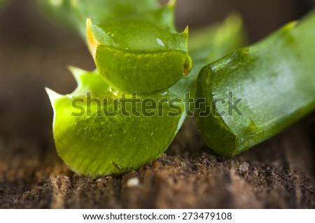 Green leaves of aloe vera plant close up on wooden background - stock photo