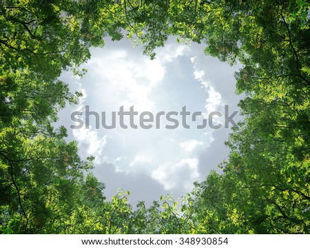 Green leaves on the sky in the middle of the heart. - stock photo