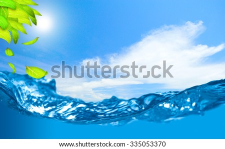 Green leaves with shallow depth of field of water and falling leaf on clear blue sky sunny day - stock photo
