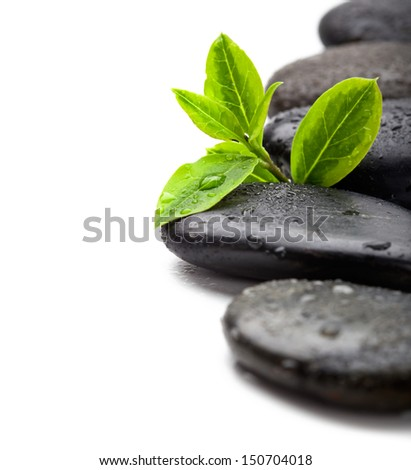 Green leaves with spa stones, isolated on white, shallow focus - stock photo