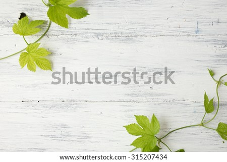 Green leaves with wild yellow flowers on wooden background