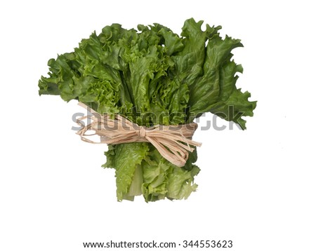 Green lettuce bouquet with sting isolated on white background