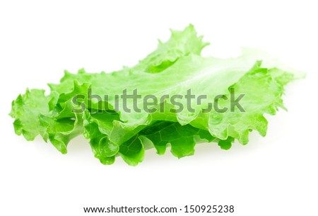 green lettuce leaves on a white background - stock photo