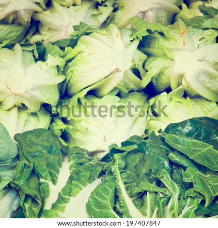 Green Lettuce on Market Stand in Israel, Retro Effect