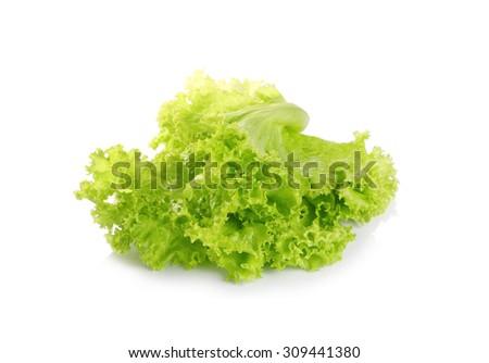 Green lettuce vegetables isolated on white background - stock photo