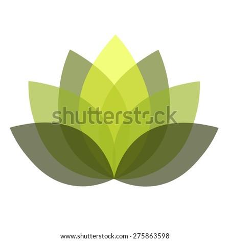 Green lotus illustration - stock photo