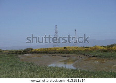 Green marsh, California