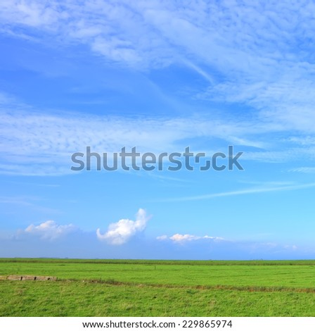 Green meadow and beautiful sky pasture nature background  - stock photo