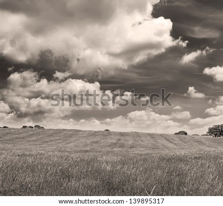 green meadow and dramatic sky in Sardinia in sepia tone