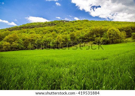 Green meadow landscape in springtime from Burcun village near Yenisehir town in Bursa province of Turkey