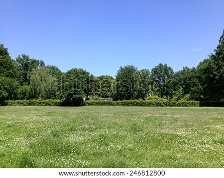 Green meadow under a clear blue sky. - stock photo