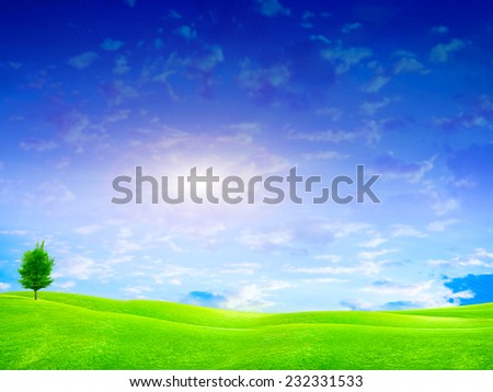 green meadow under beautiful solar sky