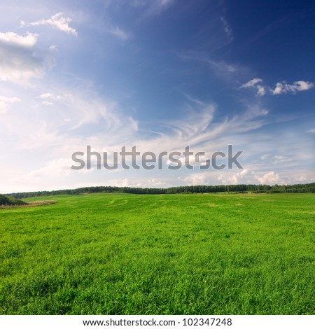 Green meadow under blue sky - stock photo