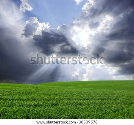 Green meadow under blue sky with clouds