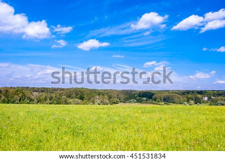Green meadow under blue sky with clouds and forest in distance. Beautiful landscape image. Background picture for different purposes.