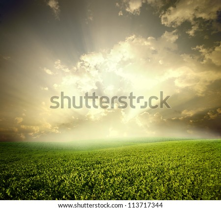 Green meadow under sky with clouds - stock photo