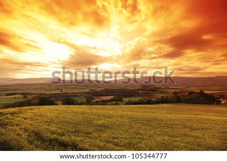 Green meadow under sunset sky with clouds