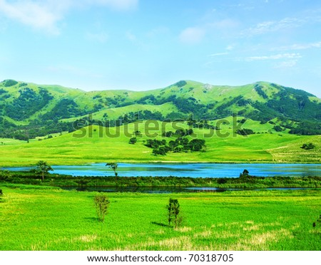green meadow view from Hasan reserve of Primorye