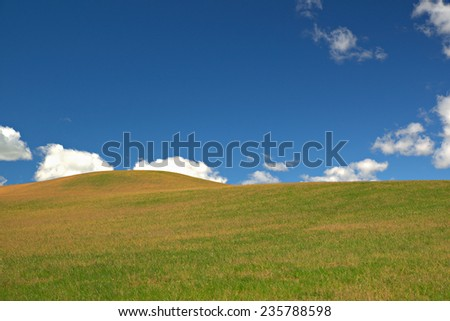 green meadow with blue sky and clouds - stock photo