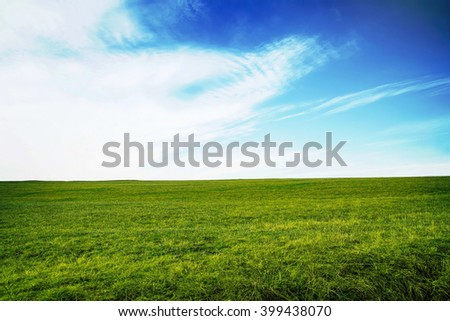 Green meadow with grass and bright blue sky - stock photo