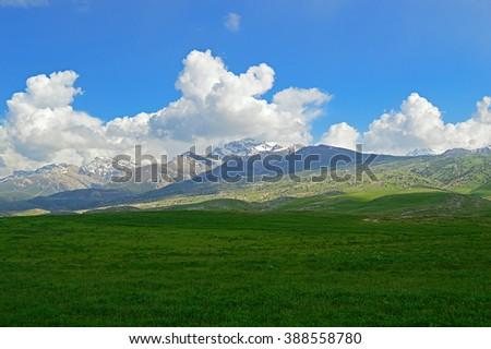 Green meadow with mountains in background, Haidarkan area, Kyrgyzstan - stock photo