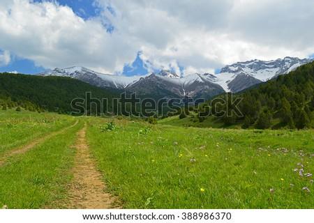 Green meadow with snowy mountains on background, Sheveli gorge, Kyrgyzstan - stock photo