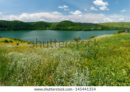 Green meadow with wild flowers on the banks of the river to the hills - stock photo