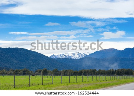 Green meadows and rustic fence, New Zealand - stock photo