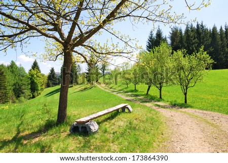 Green meadows and trees with a dirty road and empty wooden bench in Beskid mountains, Czech Republic - stock photo