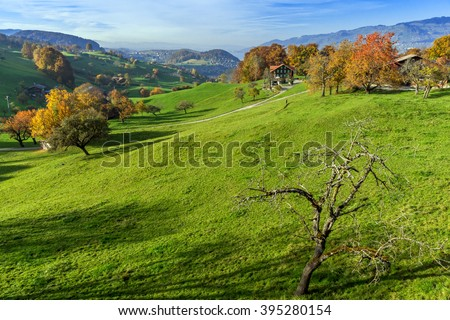 green meadows and typical Switzerland village near town of Interlaken, canton of Bern