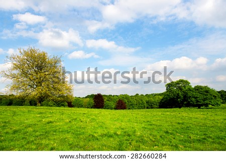 Green Meadows in the Park. Blue Sky with Fluffy Clouds. England, UK - stock photo